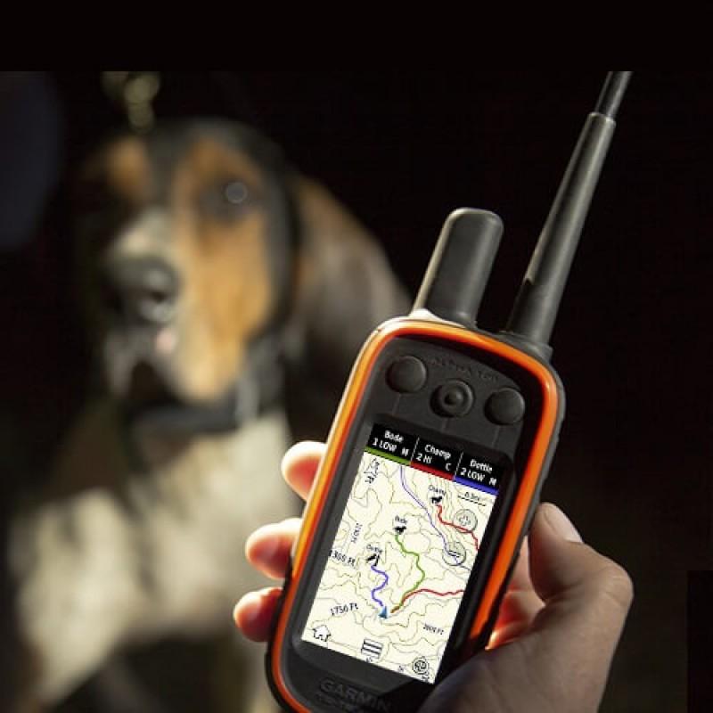Garmin каишка за следене и обучение на кучета